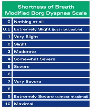 The BORG scale shows how much effort your breathing is from 0 to 10.