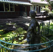 The old green metal fencing around the fish pond