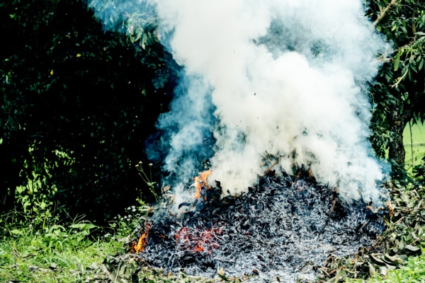 Image shows a garden bonfire producing lots of smoke.