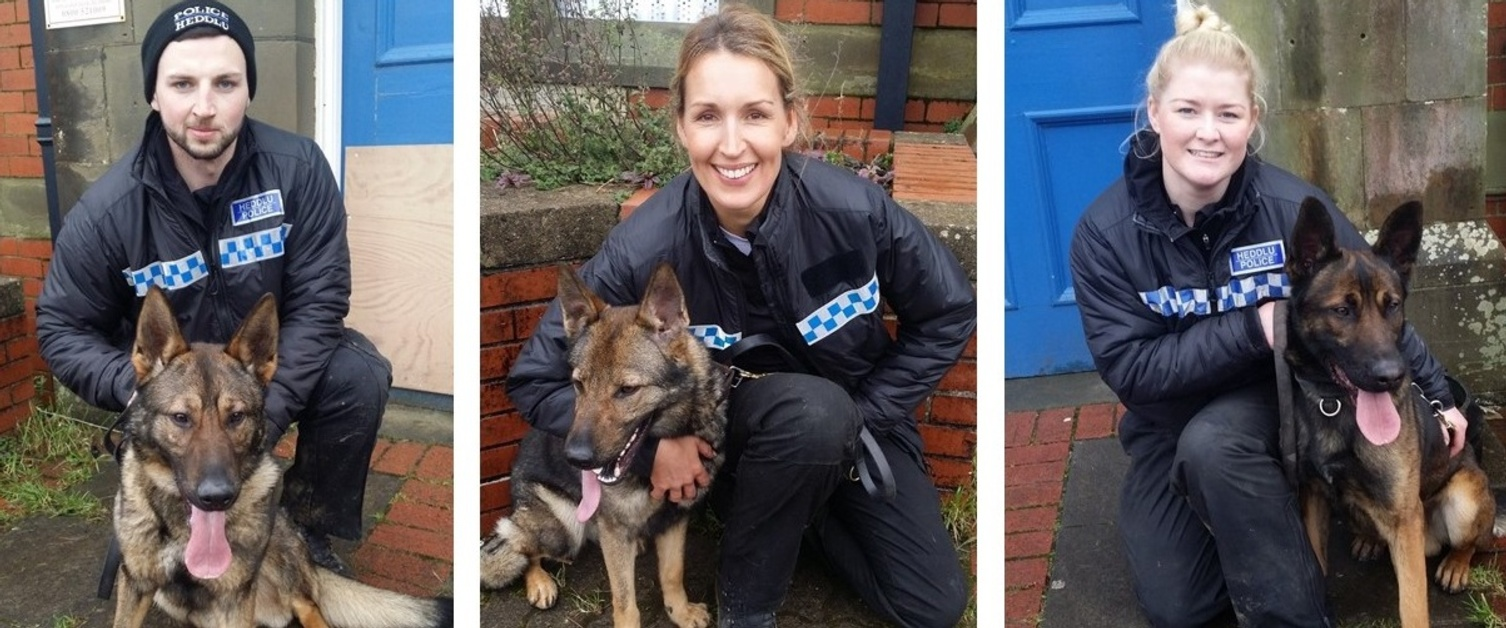 A picture of the trainee dog handlers and their dogs