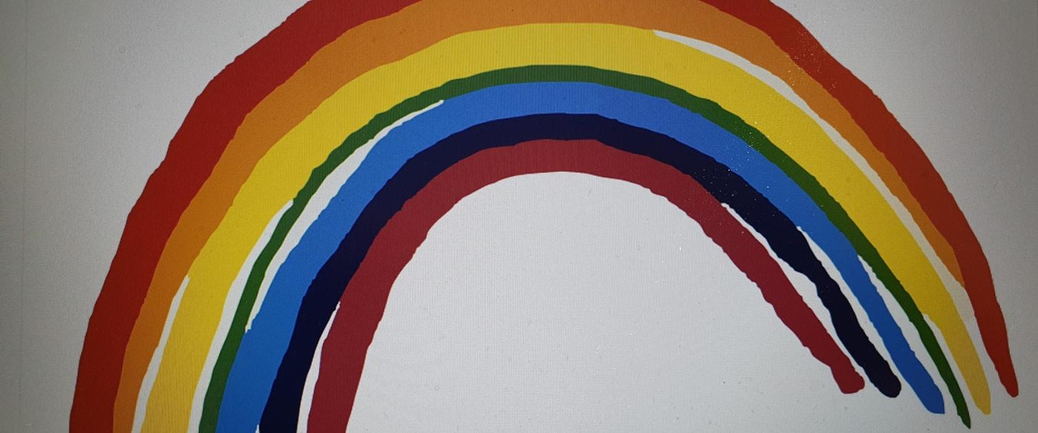 sami rainbow