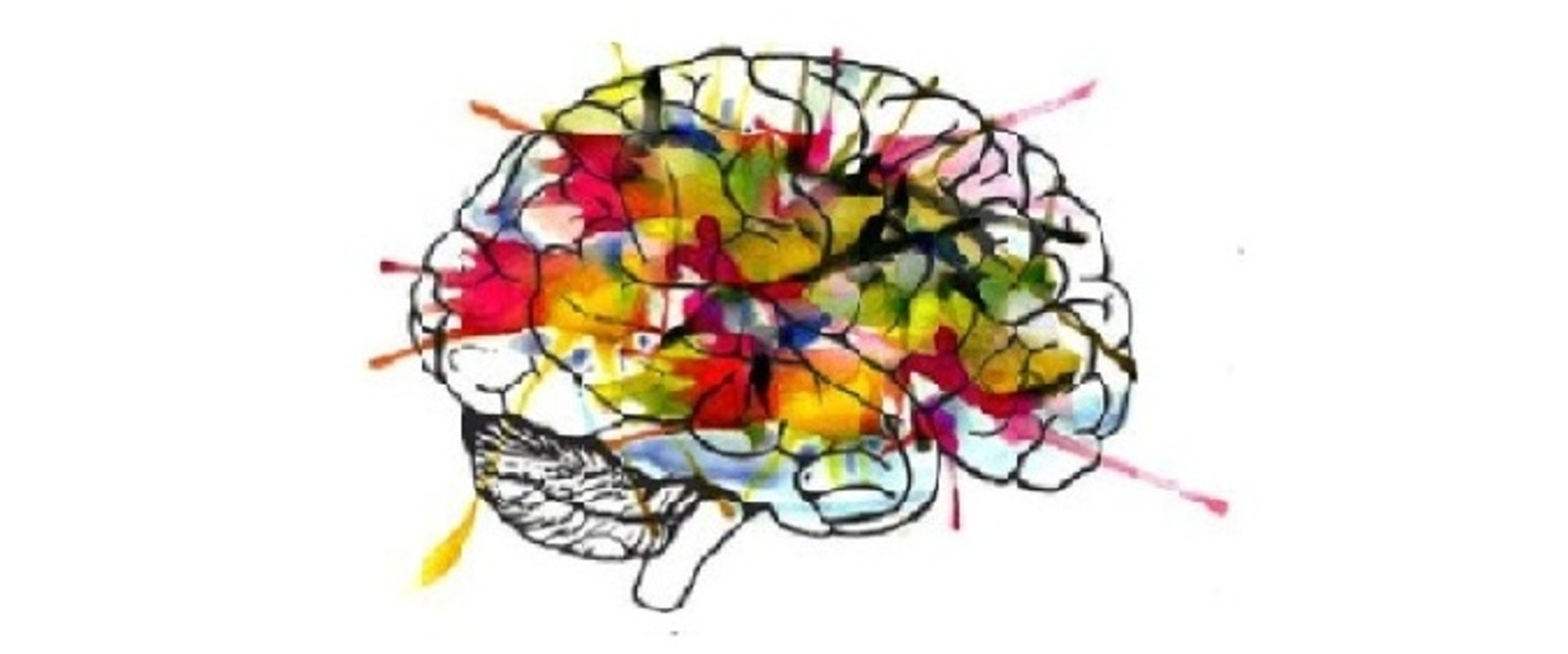 An image of a colourful brain