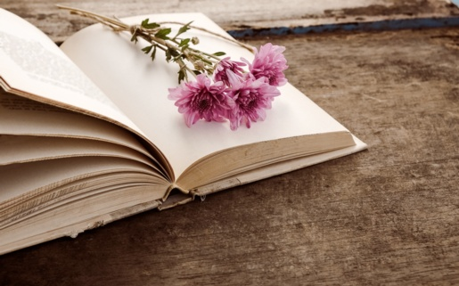 An image of an open book with flowers on top