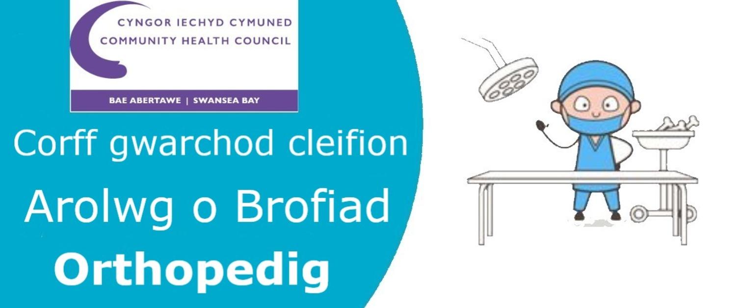 Logo ar gyfer yr Arolwg Profiad Cleifion Orthopedig