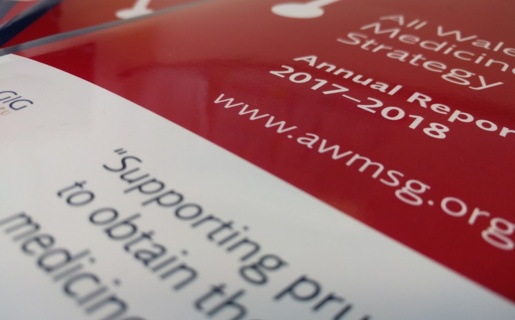 Image of an AWMSG annual report cover