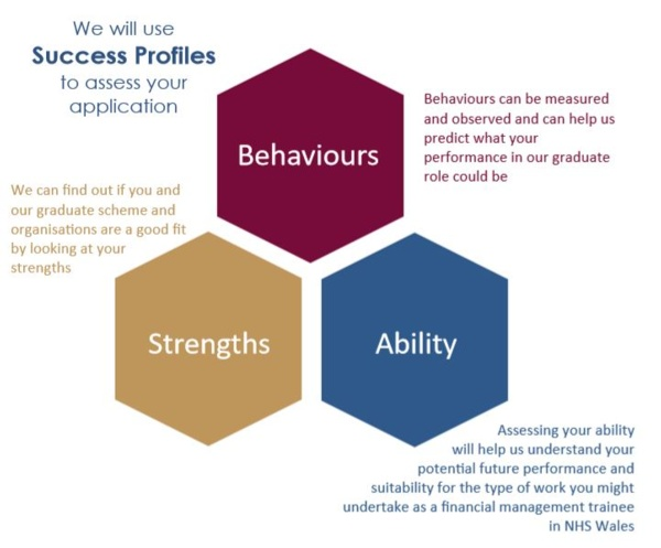 graphic showing success profiles - behaviours, strengths ad ability