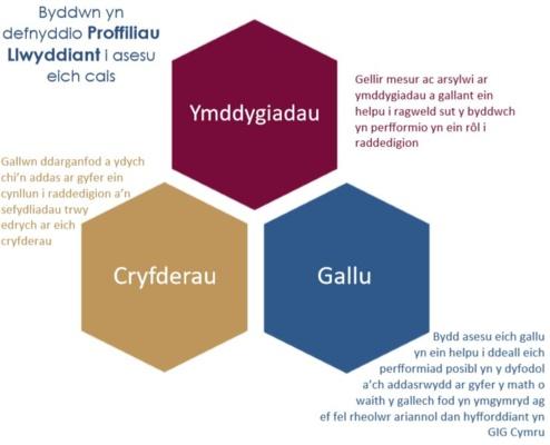 diagram o broffiliau llwyddiant