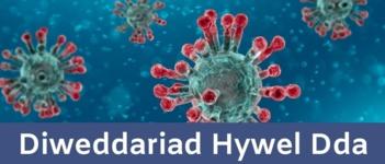 Diweddariad COVID Hywel Dda