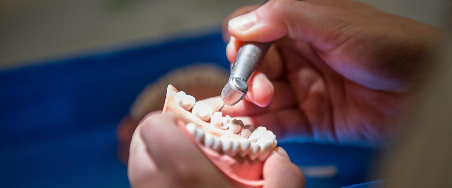 Dental trainee working on teeth