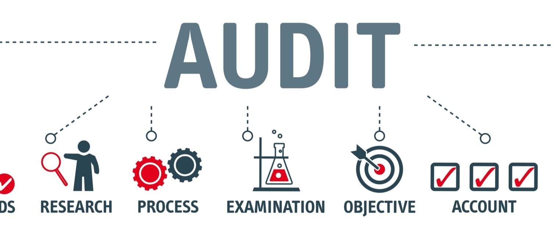 Audit structure
