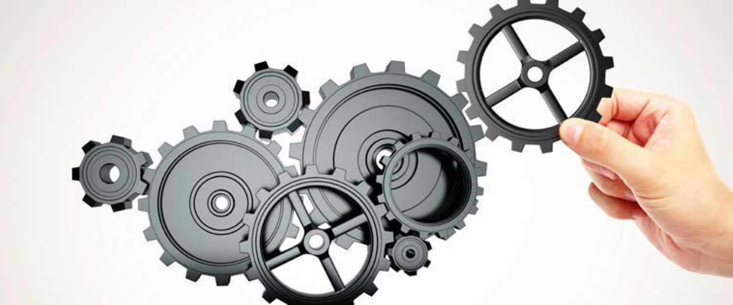 Hand holding cogs