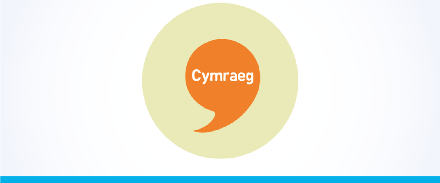 Velindre Welsh Language Scheme Plan Icon