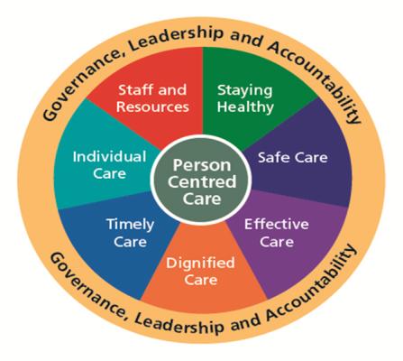 Health Care Standards 2015
