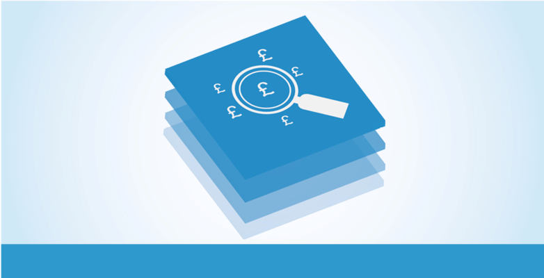 Counter Fraud Service Icon