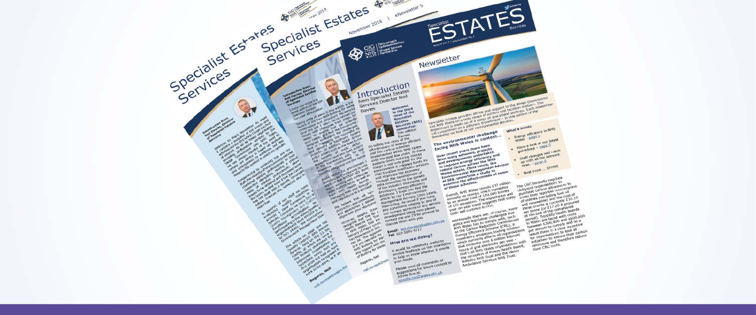 SES Newsletters