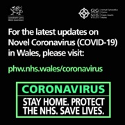 Stay At Home Save Lives 4