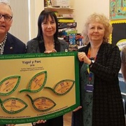 A healthy heritage: 20 years of the Welsh Network of Healthy School Schemes