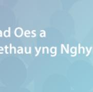 Cyhoeddi adroddiad Disgwyliad Oes a Marwolaethau yng Nghymru